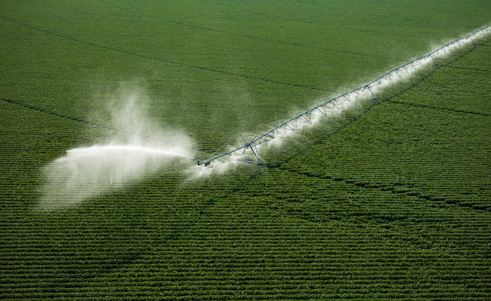 Pivot-Irrigation